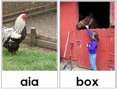 Carte tematiche: animali Pet Therapy
