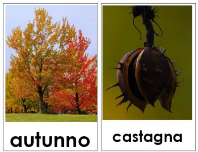 Carte tematiche: le quattro stagioni