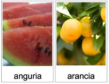 Carte tematiche: la Frutta e la frutta secca