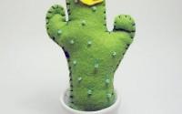 cactus-pannolenci