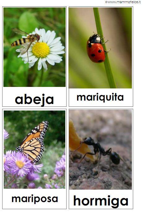 carte tematiche in spagnolo