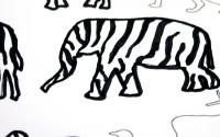 animali-zebrati