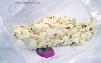 pop-corn-colorati