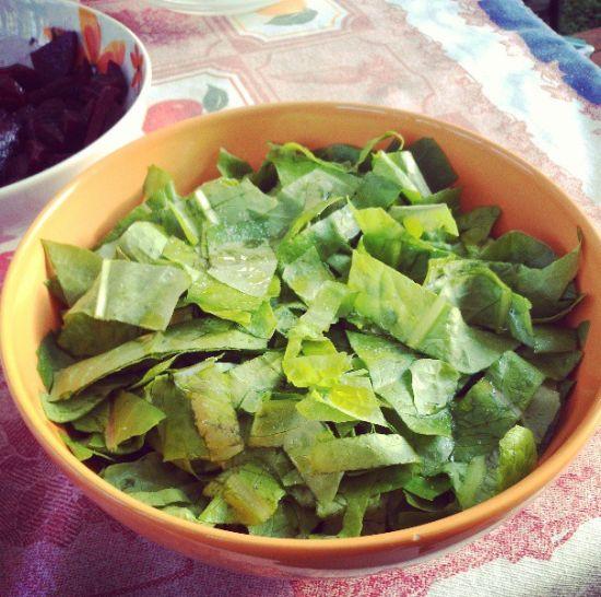 insalata-autoprodotta-orto-domestico