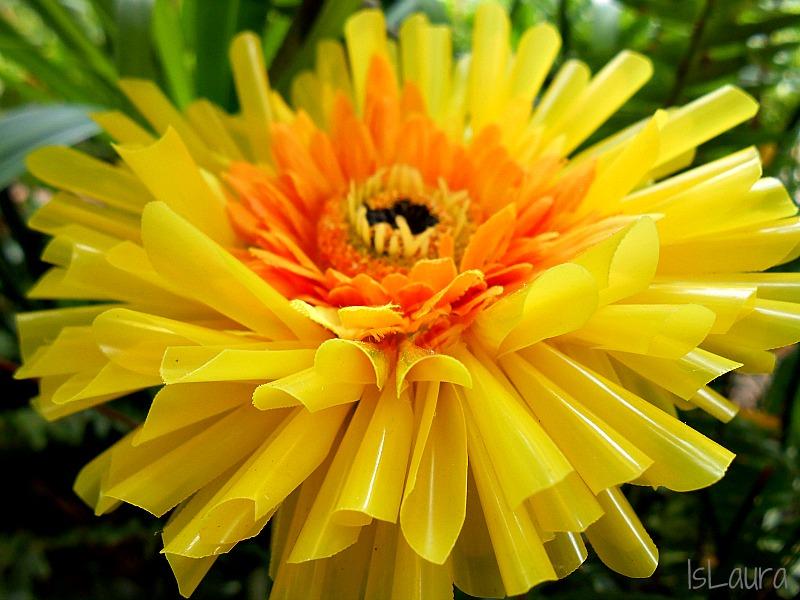 fiore in cannucce