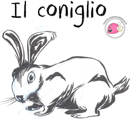 come-disegnare-un-coniglietto