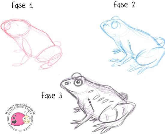 come-disegnare-una-ranocchia-in-tre-fasi