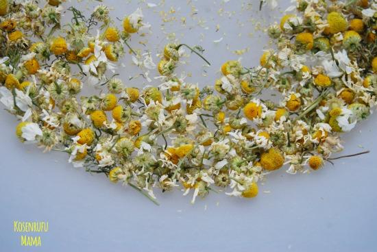 fiori camomilla essiccati