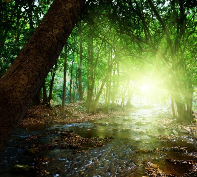 10 buone abitudini estive da mantenere vive tutto l'anno