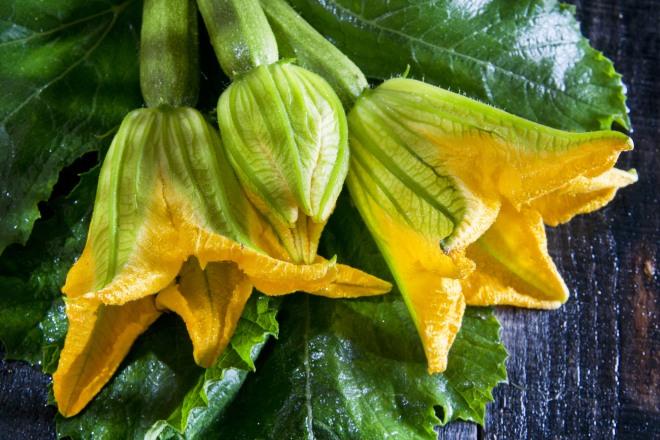 come-pulire-fiori-di-zucchina-zucca