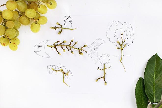 disegnare con fantasia riciclo raspo d'uva