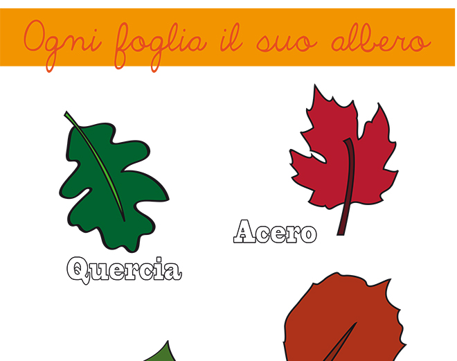 Imparare il nome delle foglie degli alberi: PDF