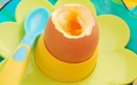uovo-alla-coque-svezzamento-10-mesi