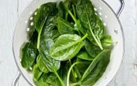 vellutata-spinaci-per-svezzamento-12-mesi