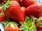 Come conservare le fragole a lungo