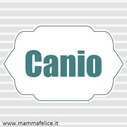 Canio