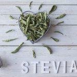 Ricette con la Stevia: cos'è e come si usa