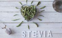 stevia-cosa-come-ricette