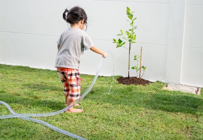 giochi-montessori-all-aperto-con-elementi-naturali-terra-orto
