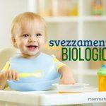 Svezzamento bio: come organizzarsi in famiglia