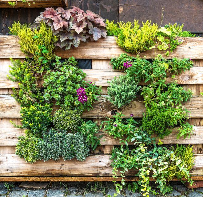 Idee per arredare e rendere bello piccolo giardino in for Idee per il giardino