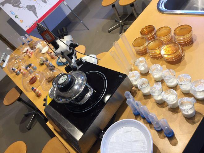 laboratorio-cibo-fermentato-museo-scienza-milano_02