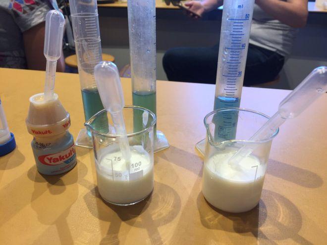 laboratorio-cibo-fermentato-museo-scienza-milano