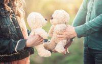 cause-esami-infertilita-sterilita-femminile-periodo-fertile