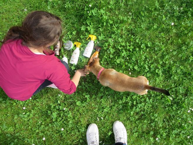 attivita-giochi-all-aperto-per-bambini-giardino-estate