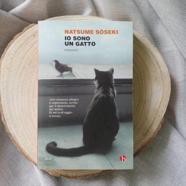 libri-estivi-ragazzi-superiori-biennio