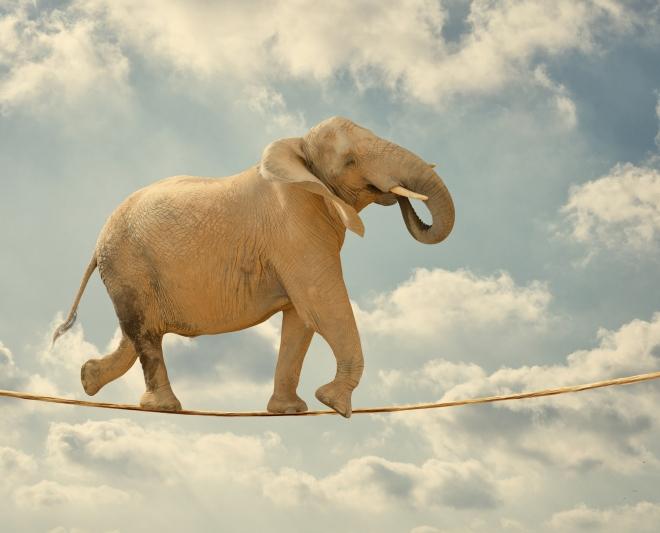 resilienza-ottimismo-mindfulness