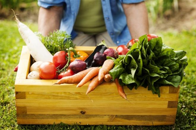 ricette-di-pasta-con-verdure-di-stagione