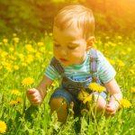 Attività intelligenti per bambini di 1 anno