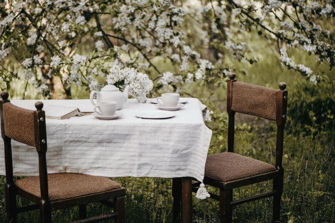 come-organizzare-un-pranzo-in-giardino-sorprendente-inclusivo_mammafelice